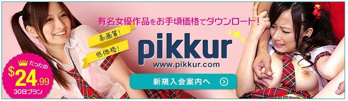 Pikkur(ピッカー)